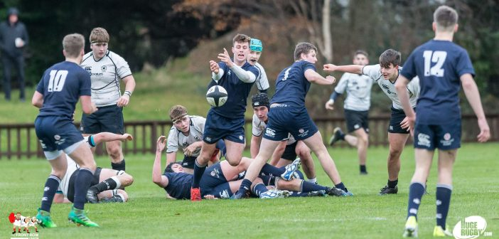 Schools: Methodist College 14 Campbell College 10