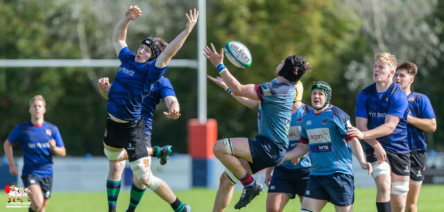 Club Men: Belfast Harlequins   II 14 Queen's University II 22 Friendly